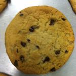 Who can resist a just-baked-this-morning chocolate chip cookie?