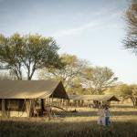 Brand new tents now at Serengeti Safari Camp.