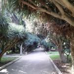 حديقة التجارب الجزائر