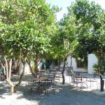 Hotel Sao Joao de Deus, jardines planta baja
