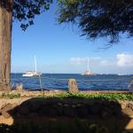 Landscape - Aloha Mixed Plate Photo