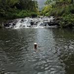 Photo de Silver Falls Ranch