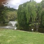 Landscape - Puhoi Valley Cafe and Cheese Store Photo