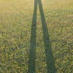 芝生広場に写った私の足の長さに注目