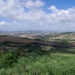 Photo de Agriturismo Podere Santa Maria
