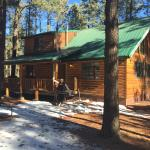 Greer in Jan 2015 @ Shoshone cabin.  Beautiful