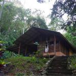 Casa Zenon, Dos Brazos de Rio Tigre