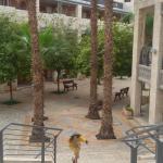 Photo of Beit She'an Hostel