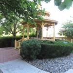 Gazebo near outdoor swimming pool