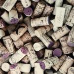 805 Wine Tours