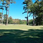 Golfbanor