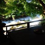 Photo de Zen Hostel
