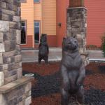 Bear River Casino Hotel Foto
