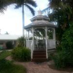 Lemon Tree Inn Foto