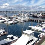View of Newport Marina from our unit.