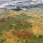 The Healing Thermal Springs of Edipsos Foto