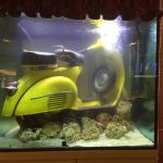 Sunken Vespa fish tank greets you in the Snug Lounge