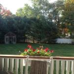 View of garden from the back porch