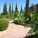 Stunning gardens and outdoor areas.