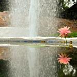 Jardin Botanico del Quindio