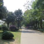 Junshan Island Foto