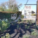 Photo de Wente Vineyards Estate Winery