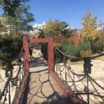Bridge in the park...