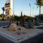 Casino with the desert plantings at the entrance