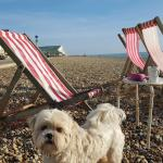 Katie loved the deckchairs on the beach!