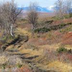 Groenbakken trail