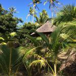 Photo de Serenity Beaches Resort