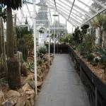 Foto de Volunteer Park Conservatory