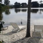 Photo of Marco Island Lakeside Inn