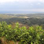 Photo of Kastellos Village
