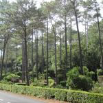 Parque Florestal de Sao Joao