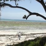 galu beach view