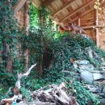 North Island Wildlife Recovery Centre Foto