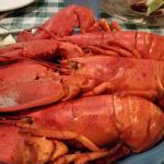 3 Lobsters