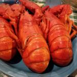 3 Lobsters - Tail view