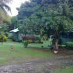 View of grounds & bungalows
