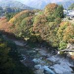 利根川沿いの新緑や紅葉が美しい