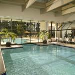 Indoor Pool (Open Year Round)