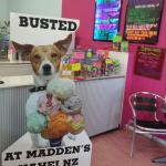 Maddens Ice Cream Parlour and Pizzeria