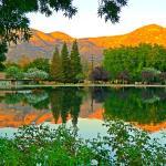 Dalton Pond
