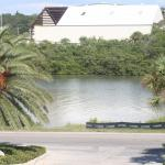 Foto de Fifty Gulfside Condominiums