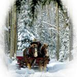 Top 10 Sleigh Ride in USA