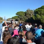 Balade sur les canaux autour d'Aigues-Mortes
