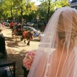 Wedding from our Honeymoon Garden Suite