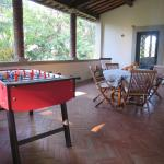 Garden - great hangout place