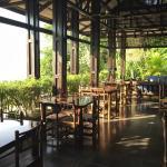 TikiVillas Rainforest Lodge Photo